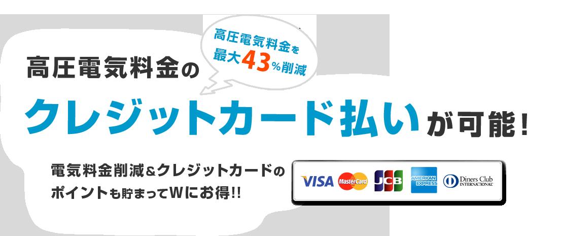 リミックスでんきなら高圧電気料金のクレジットカード払いが可能!高圧電気料金を最大43%削減 電気料金削減&クレジットカードのポイントも貯まってWにお得!!